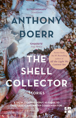 Picture of The Shell Collector