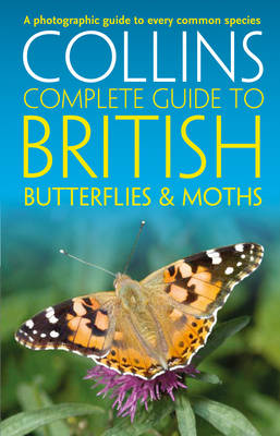 Picture of British Butterflies and Moths