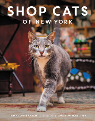 Picture of Shop Cats of New York