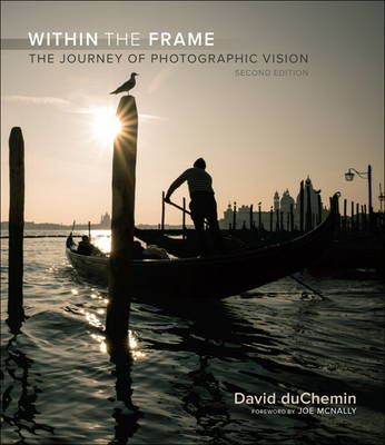 Picture of Within the Frame: The Journey of Photographic Vision