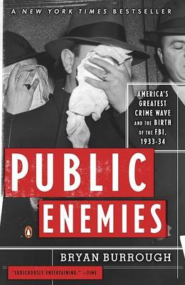 Picture of Public Enemies: America's Greatest Crime Wave and the Birth of the FBI, 1933-34