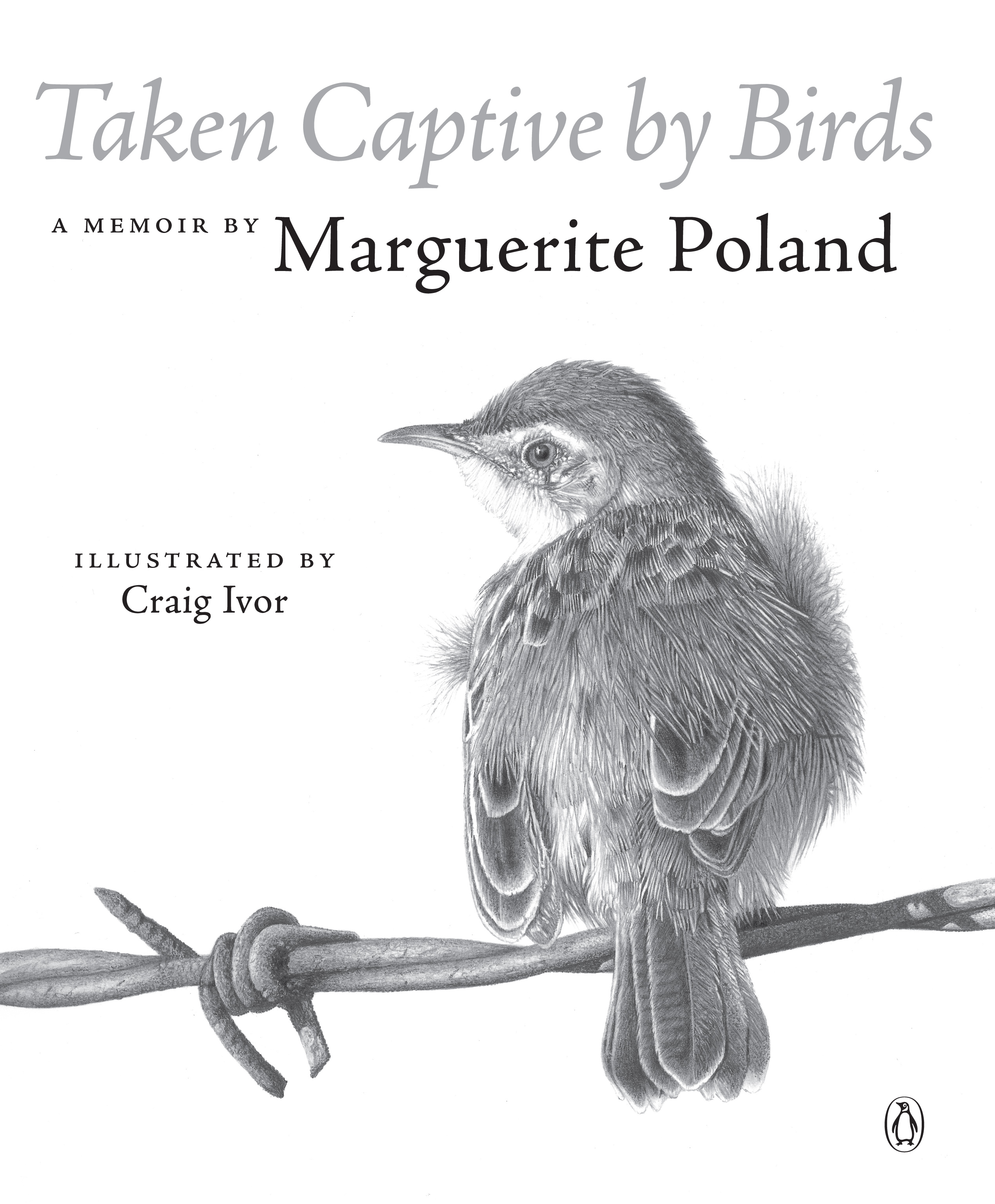 Picture of Taken Captive by Birds