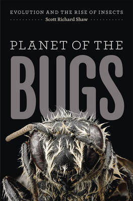 Picture of Planet of the Bugs: Evolution and the Rise of Insects