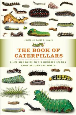 Picture of The Book of Caterpillars: A Life-Size Guide to Six Hundred Species from Around the World