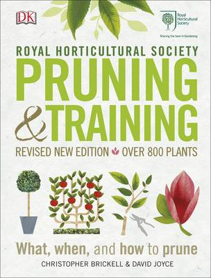 Picture of RHS Pruning & Training: What, When, and How to Prune
