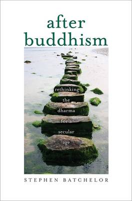 Picture of After Buddhism: Rethinking the Dharma for a Secular Age