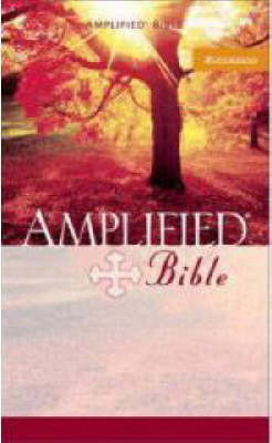 Picture of Amplified Mass Market Bible