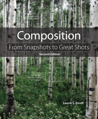 Picture of Composition: From Snapshots to Great Shots