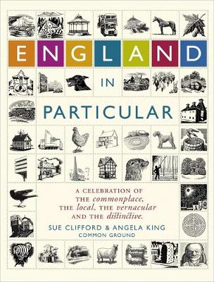 Picture of England in Particular: A Celebration of the Commonplace, the Local, the Vernacular and the Distinctive