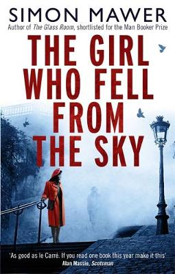 Picture of The Girl Who Fell from the Sky