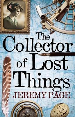 Picture of The Collector of Lost Things