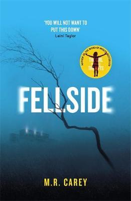 Picture of Fellside