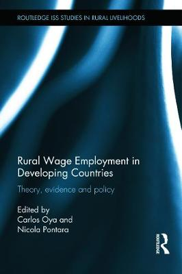 Picture of Rural Wage Employment in Developing Countries: Theory, Evidence and Policy