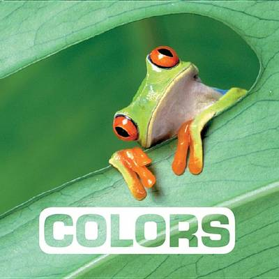 Picture of Colors