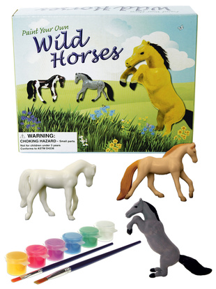 Picture of Paint Your Own Wild Horses