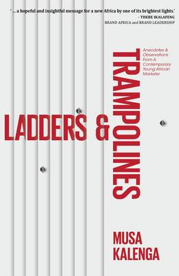 Picture of Ladders & Trampolines