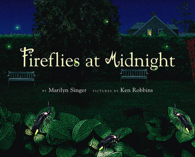 Picture of Fireflies at Midnight