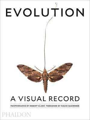 Picture of Evolution: A Visual Record