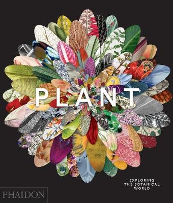 Picture of Plant: Exploring the Botanical World