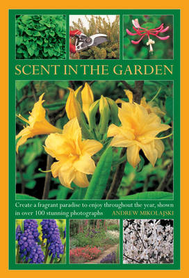Picture of Scent in the Garden: Create a Fragrant Paradise to Enjoy Throughout the Year, Shown in 100 Stunning Photographs