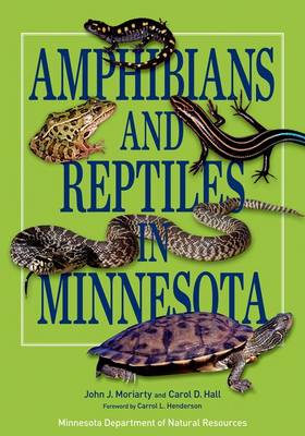 Picture of Amphibians and Reptiles in Minnesota