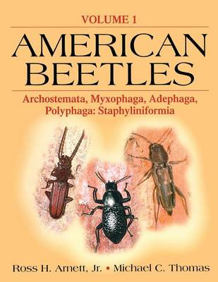 Picture of American Beetles: Archostemata, Myxophaga, Adephaga, Polyphaga: Staphyliniformia: Volume 1