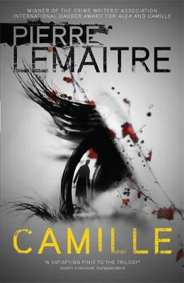 Picture of Camille: Book 3: The Brigade Criminelle Trilogy