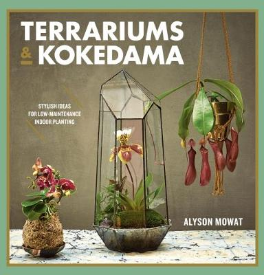 Picture of Terrariums & Kokedama: Stylish ideas for low-maintenance indoor planting