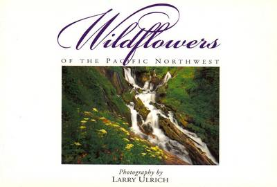 Picture of Wildflowers of the Pacific Northwest: Twenty Postcards