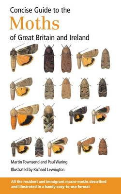Picture of Concise Guide to the Moths of Great Britain and Ireland