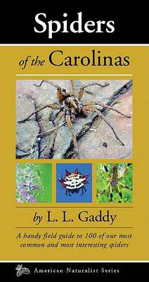 Picture of Spiders of the Carolinas: A Handy Field Guide to 100 of Our Most Common and Interesting Spiders