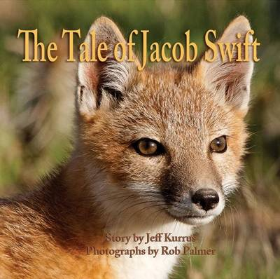 Picture of The Tale of Jacob Swift