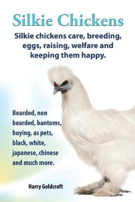 Picture of Silkie Chickens Care, Breeding, Eggs, Raising, Welfare and Keeping Them Happy: Bearded, Non Bearded, Bantoms, Buying, as Pets, Black, White, Japanese, Chinese and Much More