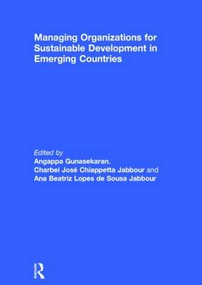 Picture of Managing Organizations for Sustainable Development in Emerging Countries
