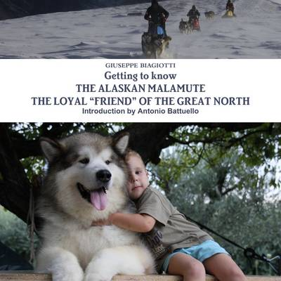 Picture of Getting to Know the Alaskan Malamute the Loyal  Friend  of the Great North