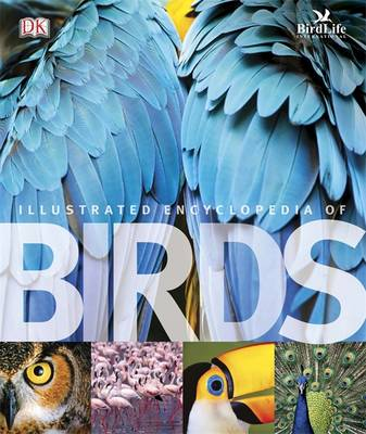 Picture of The Illustrated Encyclopedia of Birds