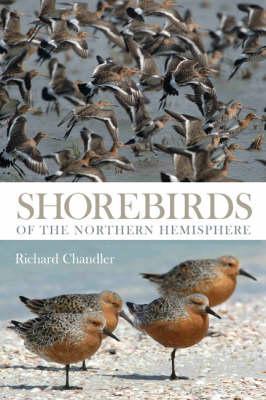 Picture of Shorebirds of the Northern Hemisphere