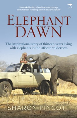 Picture of Elephant dawn