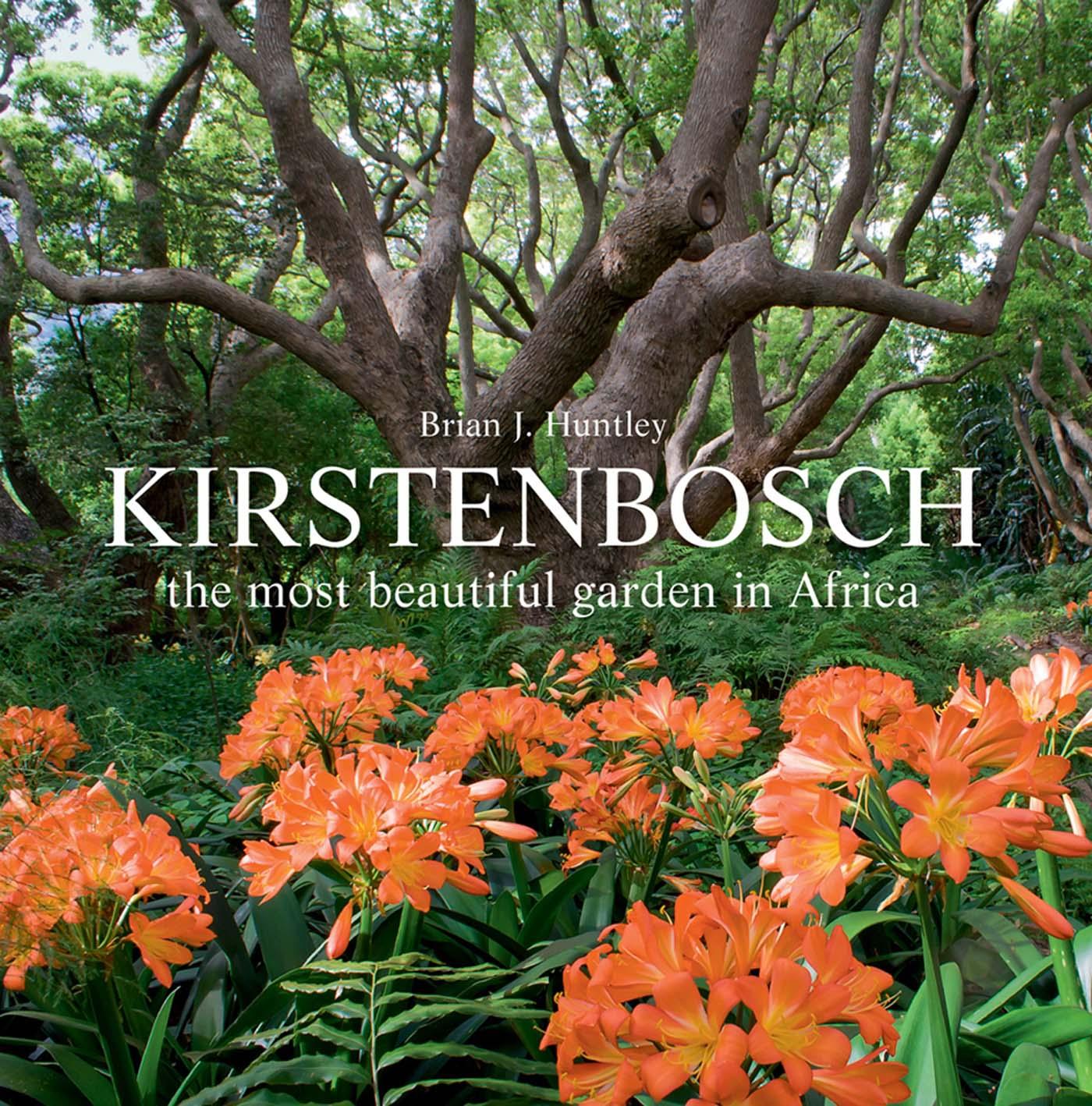 Picture of Kirstenbosch