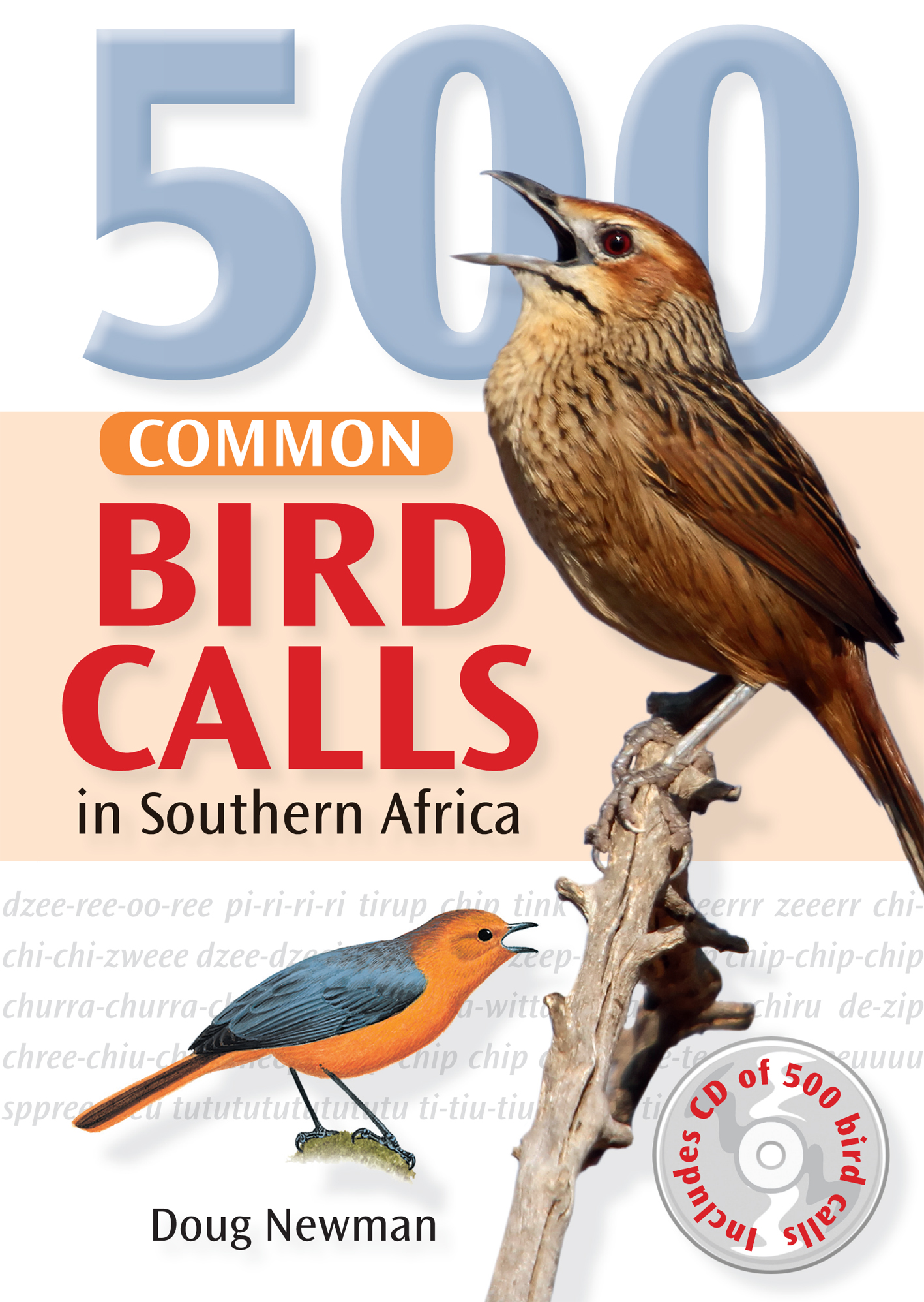 Picture of 500 Common bird calls in Southern Africa