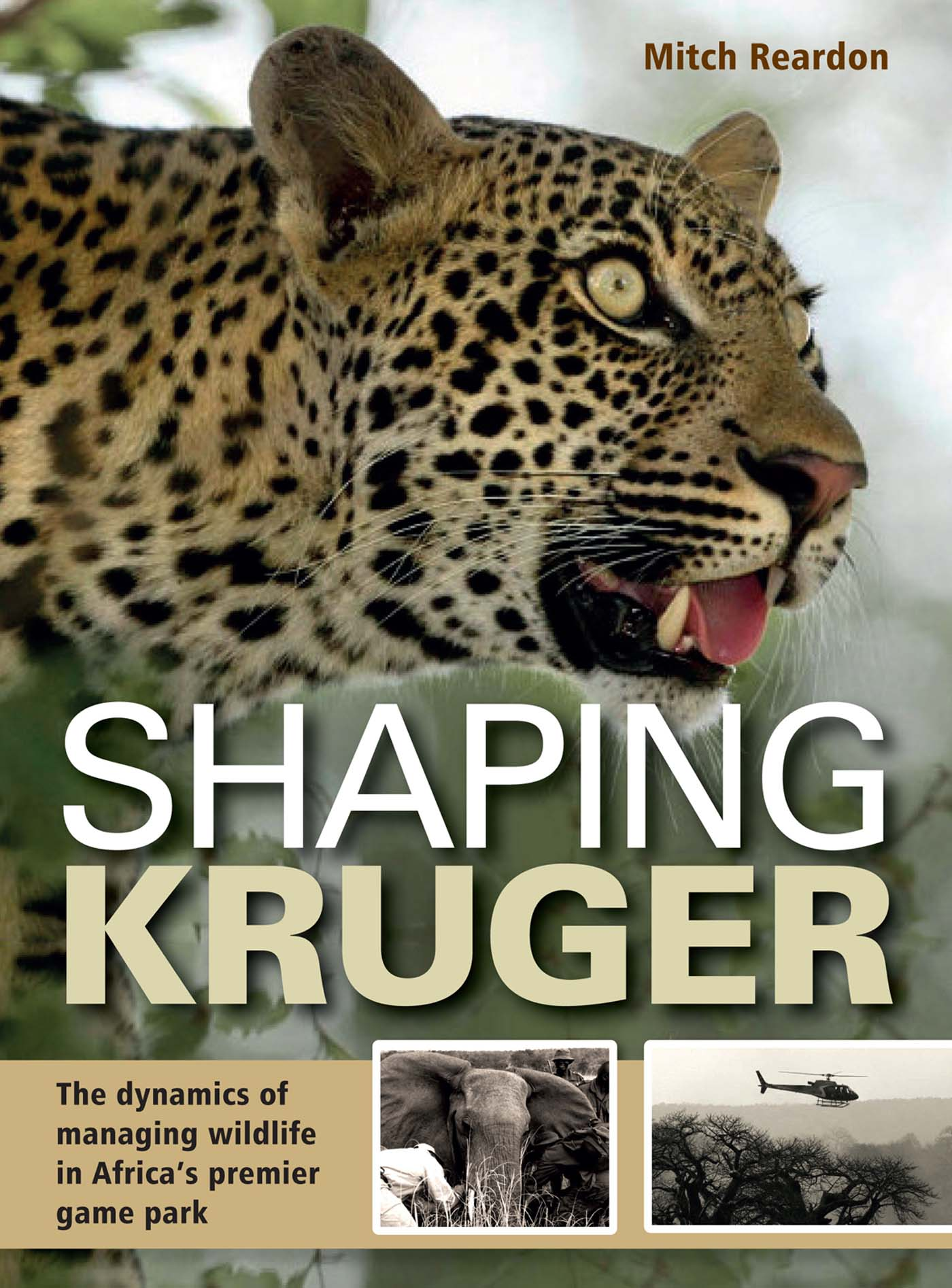 Picture of Shaping Kruger