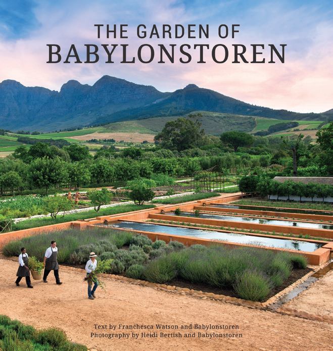 Picture of The garden of Babylonstoren