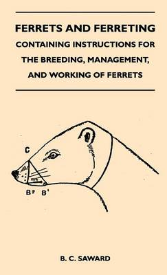 Picture of Ferrets And Ferreting - Containing Instructions For The Breeding, Management, And Working Of Ferrets