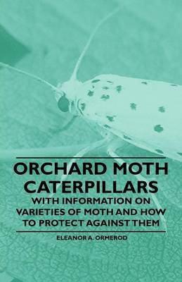 Picture of Orchard Moth Caterpillars - With Information on Varieties of Moth and How to Protect Against Them