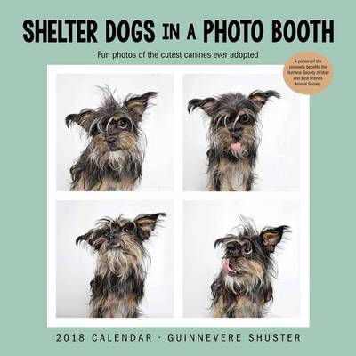 Picture of Shelter Dogs in a Photo Booth 2018 Wall Calendar