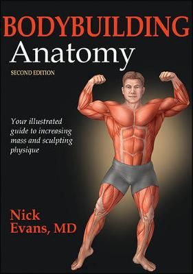 Picture of Bodybuilding Anatomy