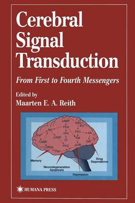 Picture of Cerebral Signal Transduction: From First to Fourth Messengers