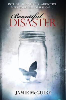 Picture of Beautiful Disaster