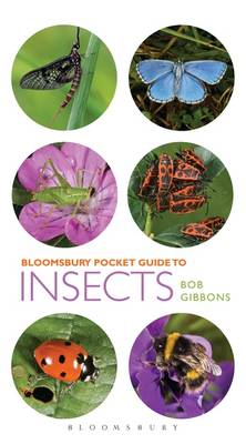 Picture of Pocket Guide to Insects