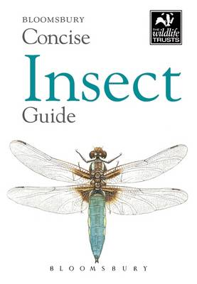 Picture of Concise Insect Guide